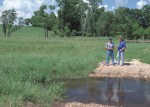 Stream crossing for livestock